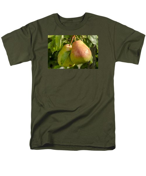 Organic Pears Hanging In Orchard Men's T-Shirt  (Regular Fit) by Teri Virbickis