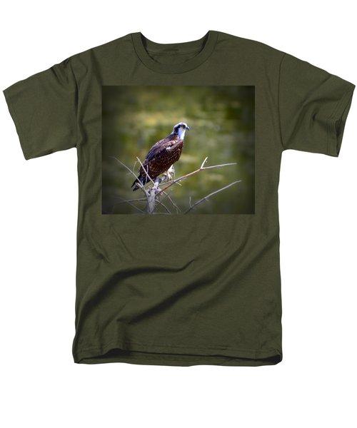 Osprey In Wait Men's T-Shirt  (Regular Fit) by Josephine Buschman