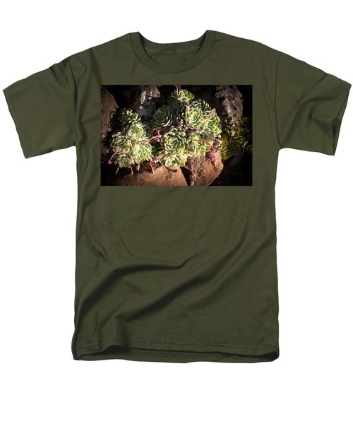 Men's T-Shirt  (Regular Fit) featuring the photograph Out Door Succulents by Catherine Lau