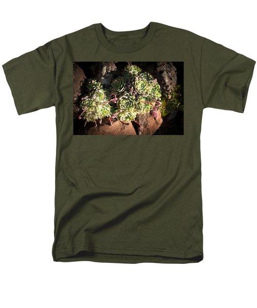Out Door Succulents Men's T-Shirt  (Regular Fit) by Catherine Lau