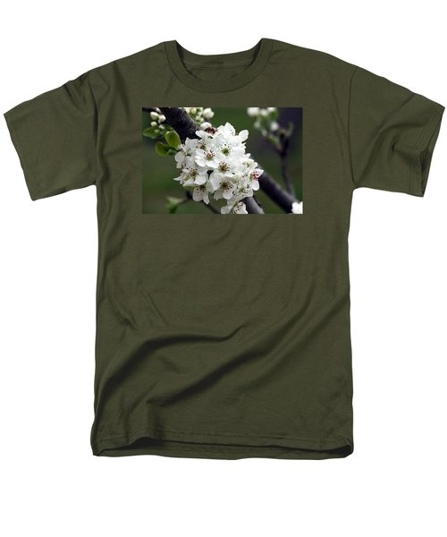 Pear Blossoms In Spring Men's T-Shirt  (Regular Fit) by Sheila Brown