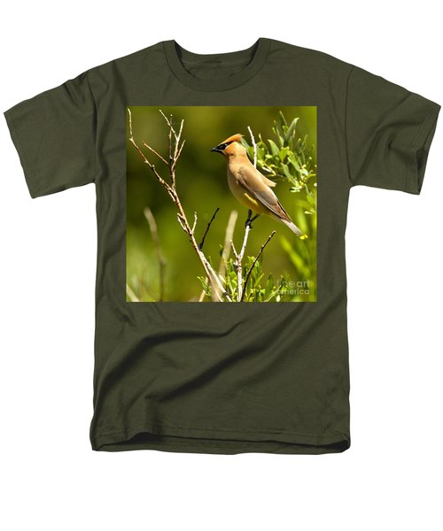 Perfectly Perched Men's T-Shirt  (Regular Fit) by Adam Jewell