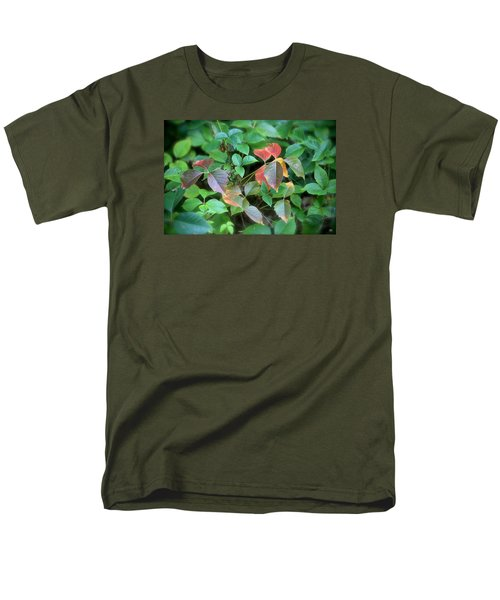 Poison Ivy In August Men's T-Shirt  (Regular Fit)