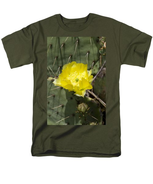 Prickly Pear Cactus Blossom - Opuntia Littoralis Men's T-Shirt  (Regular Fit) by Kathy Clark