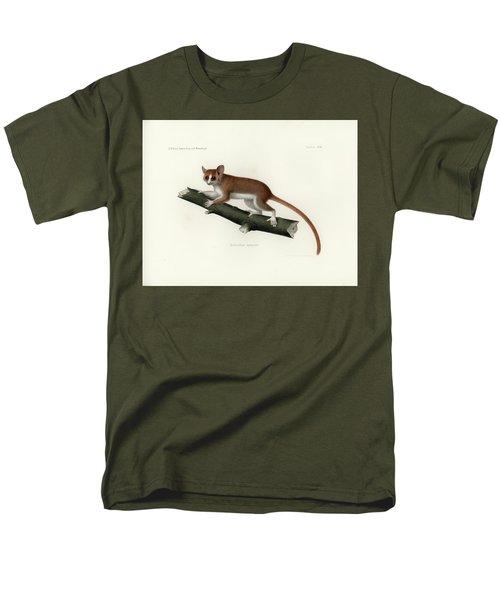 Pygmy Mouse Lemur Men's T-Shirt  (Regular Fit) by Hugo Troschel