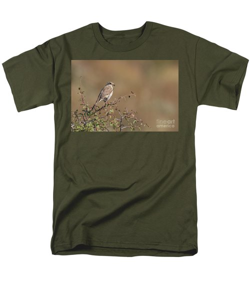 Red-backed Shrike Juv. - Lanius Collurio Men's T-Shirt  (Regular Fit) by Jivko Nakev