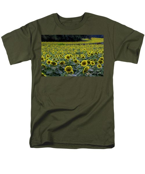 River Of Sunflowers Men's T-Shirt  (Regular Fit)