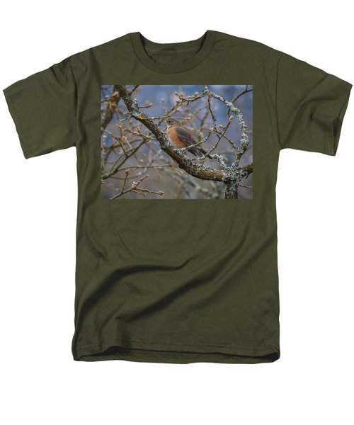 Robin In A Tree Men's T-Shirt  (Regular Fit) by Keith Boone