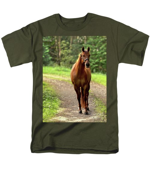 Rosey On The Road Men's T-Shirt  (Regular Fit) by Michelle Twohig