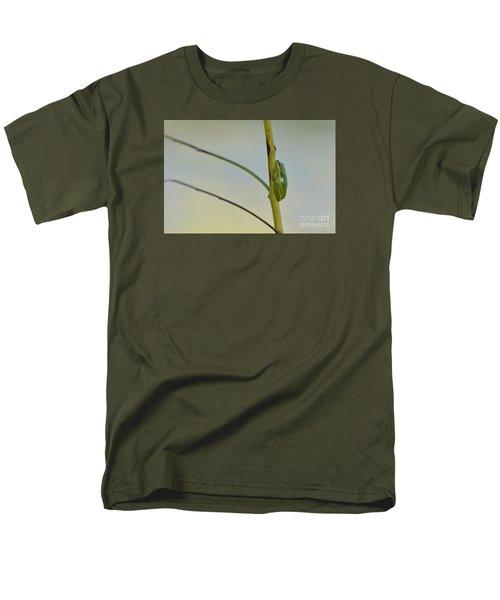 Doris Day Shining Bright Men's T-Shirt  (Regular Fit)