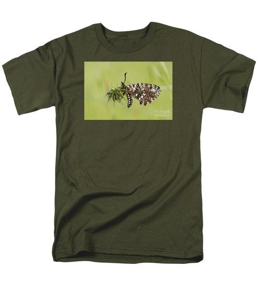 Spanish Festoon Butterfly Men's T-Shirt  (Regular Fit) by Perry Van Munster