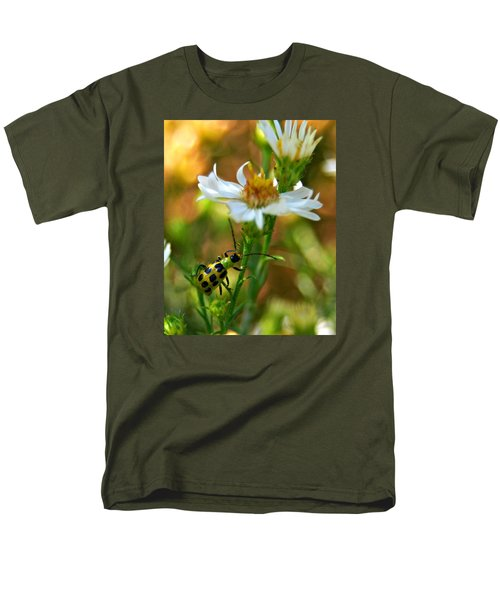 Spotted Cucumber Beetle On Aster Men's T-Shirt  (Regular Fit)