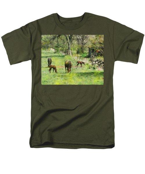 Spring Colts Men's T-Shirt  (Regular Fit)
