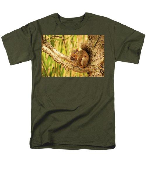 Squirrel In A Tree In The Marsh Men's T-Shirt  (Regular Fit)