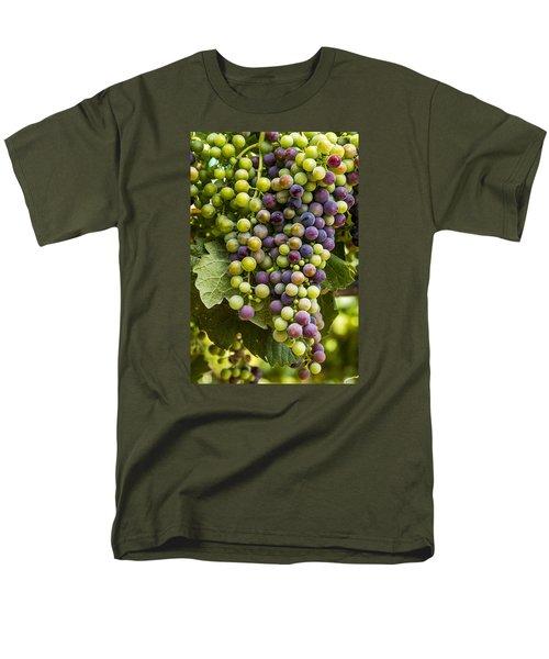 The Art Of Wine Grapes Men's T-Shirt  (Regular Fit) by Teri Virbickis