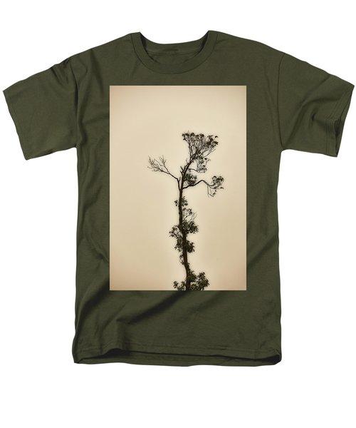 Tree In The Mist Men's T-Shirt  (Regular Fit) by Rajiv Chopra