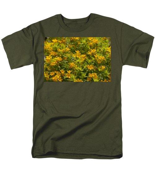 True Gold Men's T-Shirt  (Regular Fit) by Tim Good