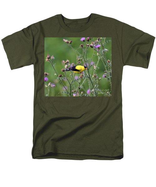 Wild Birds - American Goldfinch Male Men's T-Shirt  (Regular Fit)