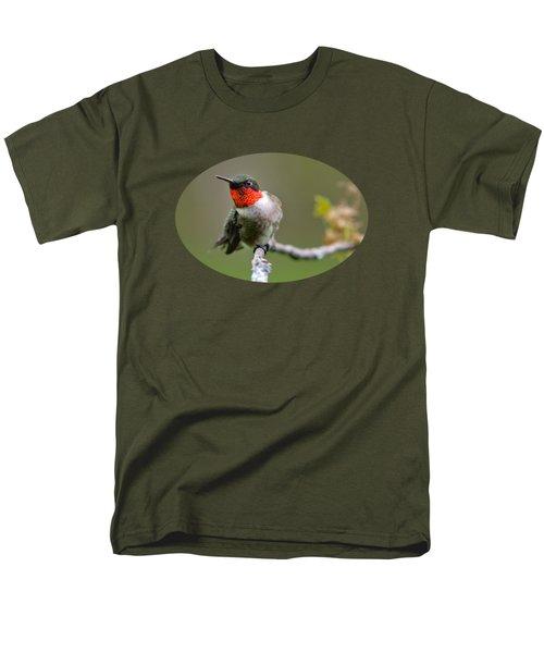 Wild Birds - Ruby-throated Hummingbird Men's T-Shirt  (Regular Fit) by Christina Rollo