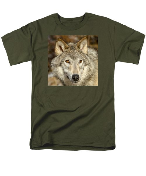 Wolf Portrait Men's T-Shirt  (Regular Fit) by Jack Bell