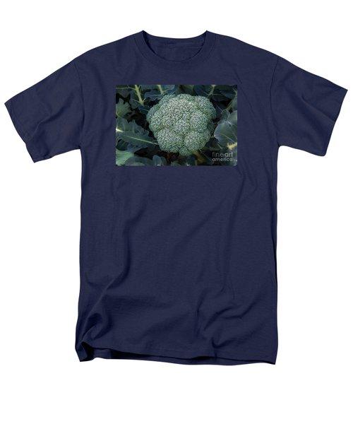 Broccoli Men's T-Shirt  (Regular Fit) by Robert Bales
