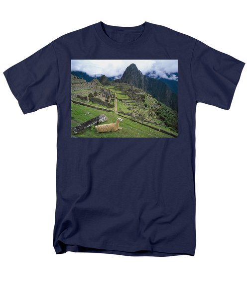 Llama At Machu Picchus Ancient Ruins Men's T-Shirt  (Regular Fit) by Chris Caldicott