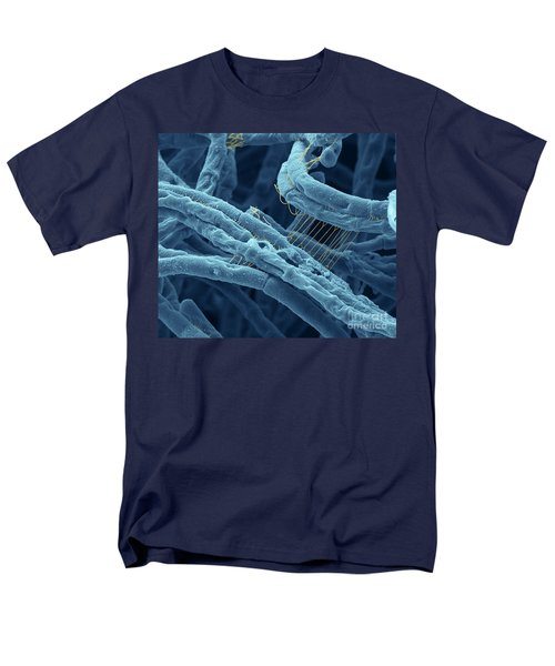 Anthrax Bacteria Sem Men's T-Shirt  (Regular Fit) by Eye Of Science and Photo Researchers