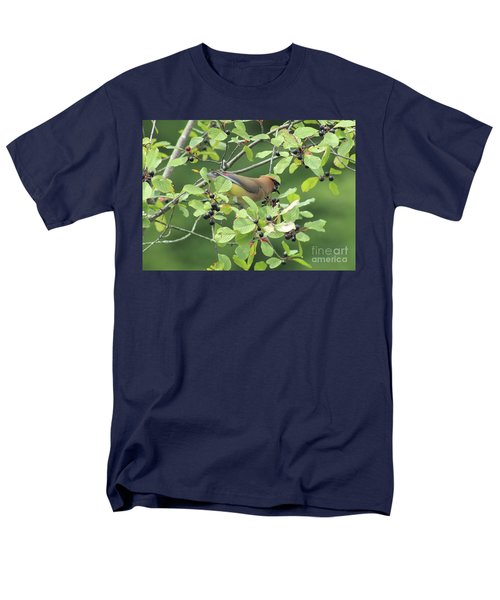 Cedar Waxwing Eating Berries Men's T-Shirt  (Regular Fit) by Maili Page