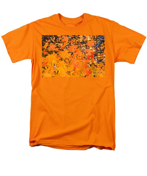 After The Rain Men's T-Shirt  (Regular Fit) by Sue Smith