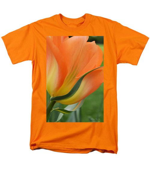 Imperfect Beauty Men's T-Shirt  (Regular Fit) by Felicia Tica