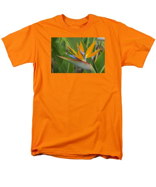 Bird Of Paradise Men's T-Shirt  (Regular Fit) by Christina Lihani