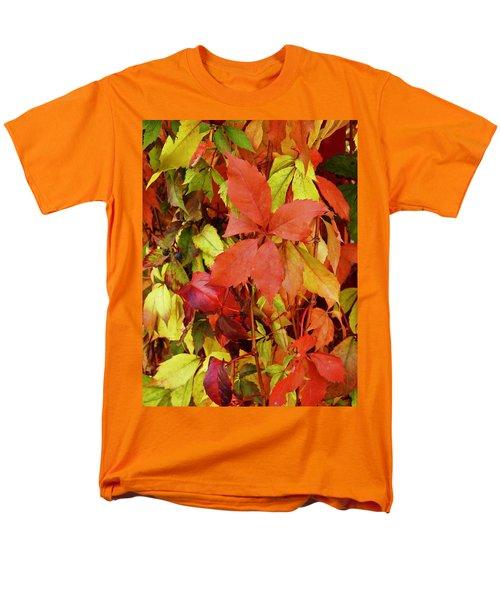 Colours Of Autumn Men's T-Shirt  (Regular Fit)