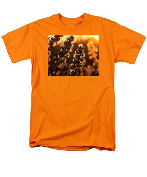 Goldenrod At Sunset Men's T-Shirt  (Regular Fit)
