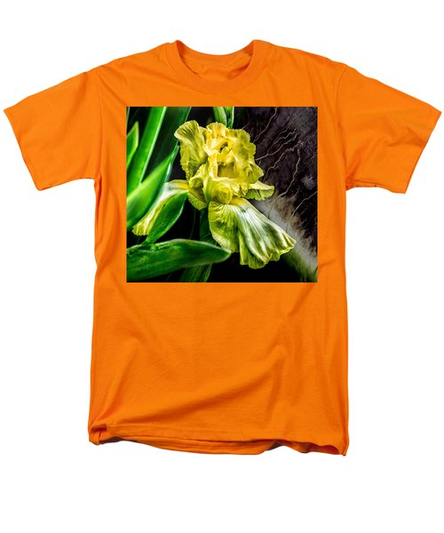 Iris In Bloom Two Men's T-Shirt  (Regular Fit)