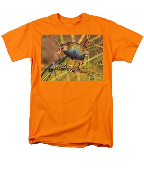 Purple Gallinule With A Treat Men's T-Shirt  (Regular Fit) by Myrna Bradshaw