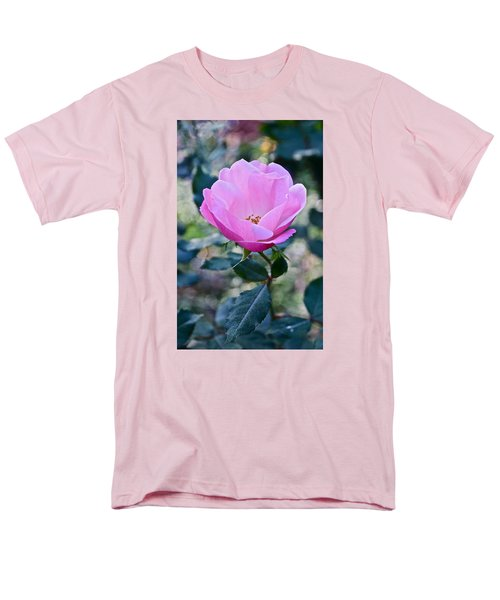 2015 After The Frost At The Garden Pink  Rose Men's T-Shirt  (Regular Fit) by Janis Nussbaum Senungetuk