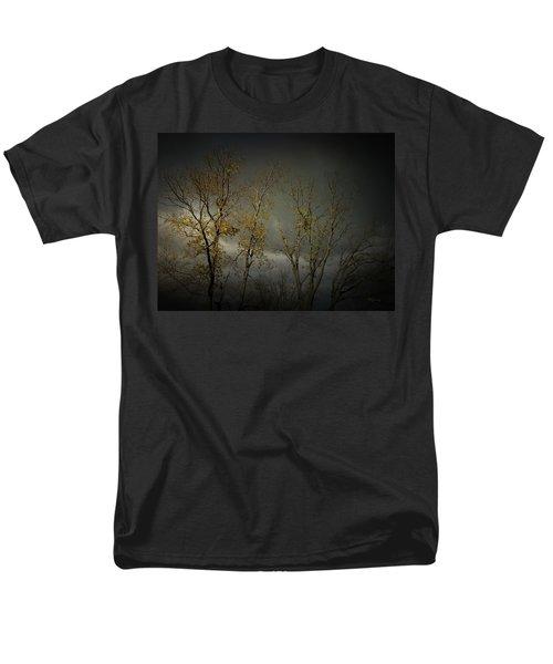 Shine 2 Men's T-Shirt  (Regular Fit)