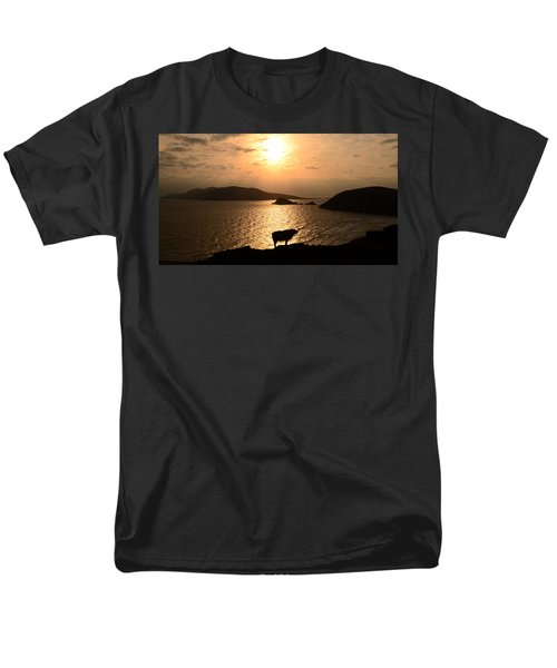 Blasket Islands Men's T-Shirt  (Regular Fit) by Barbara Walsh