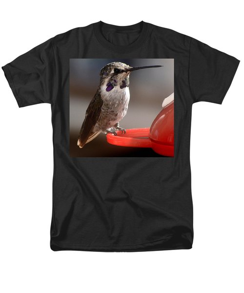 Men's T-Shirt  (Regular Fit) featuring the photograph Female Anna's Sitting On Perch by Jay Milo