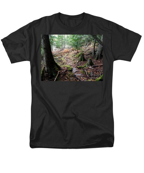 A Walk In The Forest Men's T-Shirt  (Regular Fit) by Leone Lund