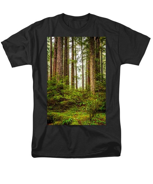 A Walk Inthe Forest Men's T-Shirt  (Regular Fit) by Ken Stanback