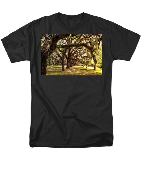 Amber Archway Men's T-Shirt  (Regular Fit)