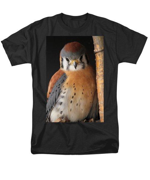 American Kestrel Men's T-Shirt  (Regular Fit) by Diane Alexander