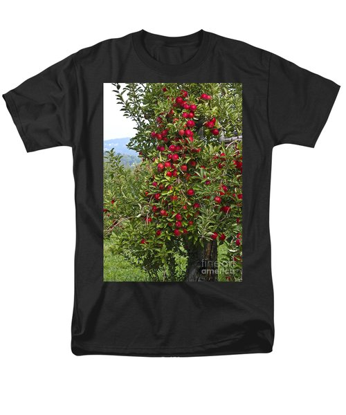 Apple Tree Men's T-Shirt  (Regular Fit) by Anthony Sacco