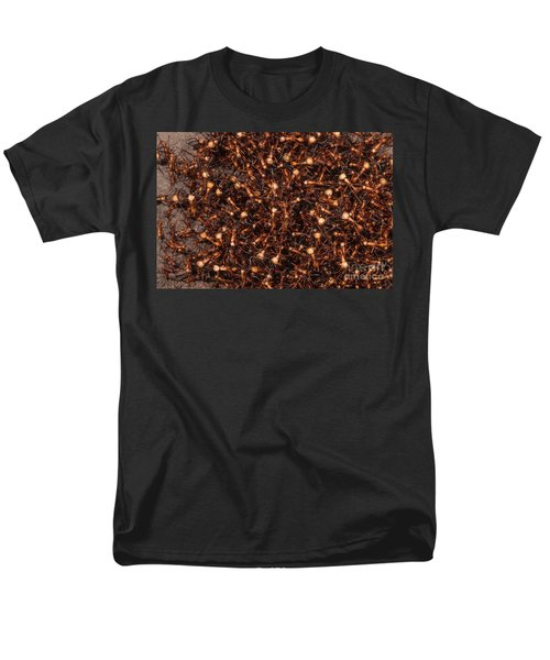 Army Ants Men's T-Shirt  (Regular Fit) by Art Wolfe
