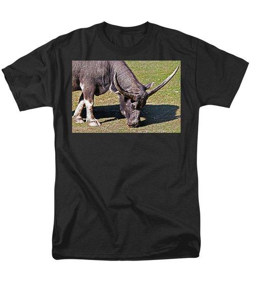 Asian Water Buffalo  Men's T-Shirt  (Regular Fit) by Miroslava Jurcik