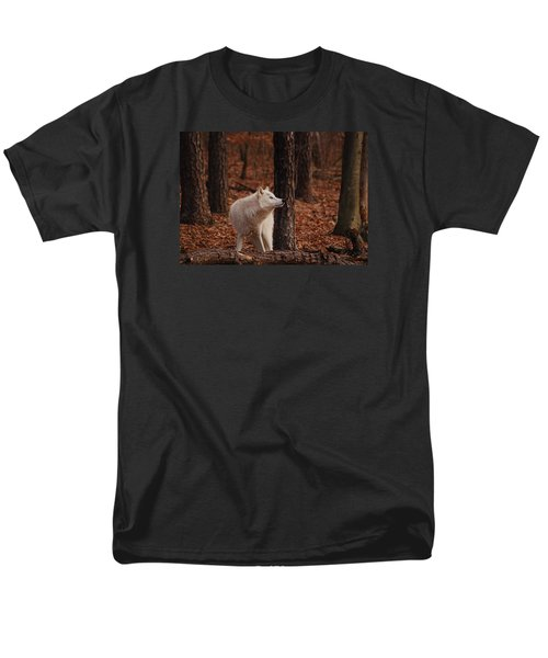 Autumn Gaze Men's T-Shirt  (Regular Fit)
