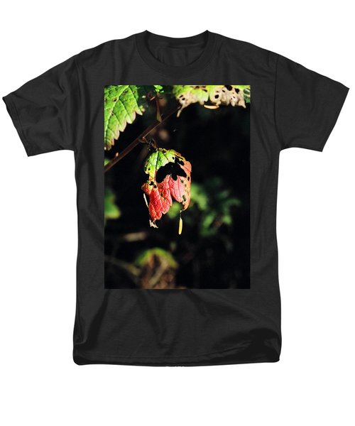 Men's T-Shirt  (Regular Fit) featuring the photograph Autumn Leaf by Cathy Mahnke