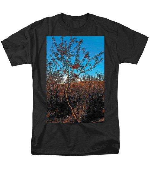 Autumn Men's T-Shirt  (Regular Fit) by Terry Reynoldson