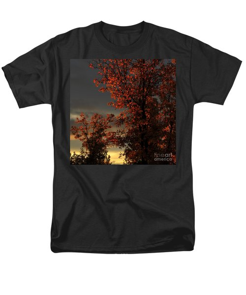 Autumn's First Light Men's T-Shirt  (Regular Fit)